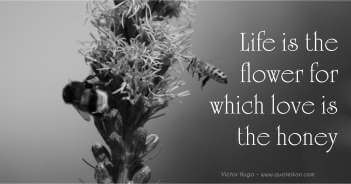 Life Is The Flower For Which Love Is The Honey - Victor Hugo