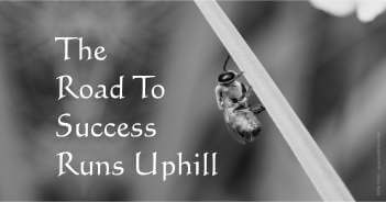 The Road To Success Runs Uphill - Michael Joseph