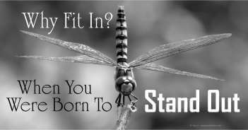 Why Fit In When You Were Born To Stand Out - Michael Joseph